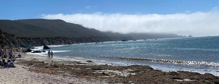 Andrew Molera State Park is one of Monterey.