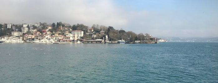 Halas71 Yatı is one of İstanbul - yeni gidilecek.