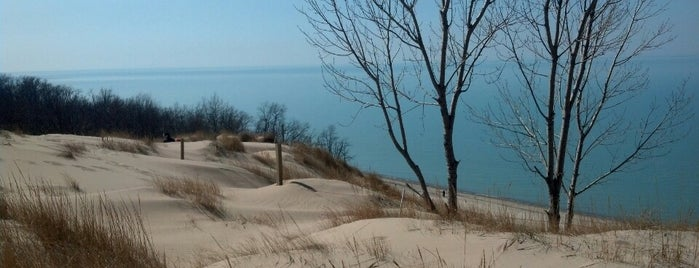 Indiana Dunes National Park is one of Lugares favoritos de Consta.