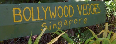 Bollywood Veggies is one of Sg.