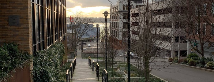 Belltown Cottage Park is one of Seattle's 400+ Parks [Part 1].