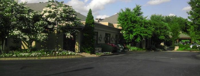 blue grillhouse is one of Lizzie'nin Kaydettiği Mekanlar.