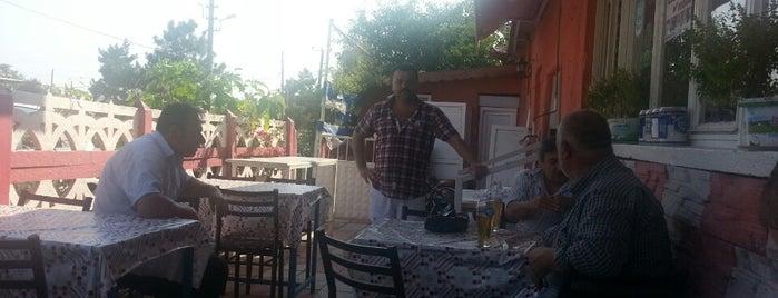 pancarkoy nadir restoran is one of gezi yerleri.