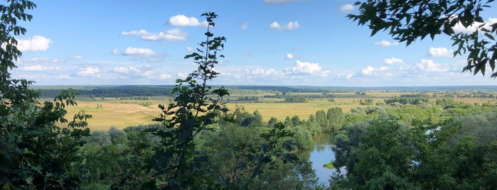 Козельск is one of культур-мультур.