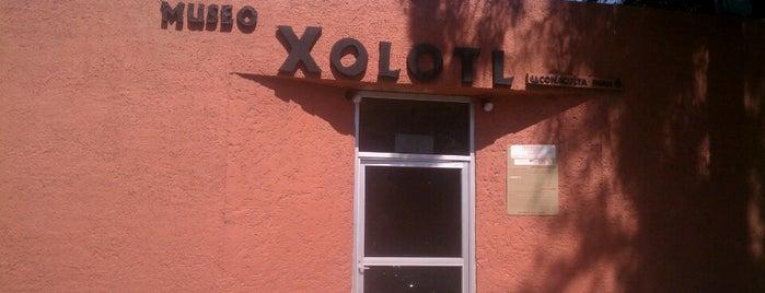 Museo Xolotl is one of Posti che sono piaciuti a Liliana.