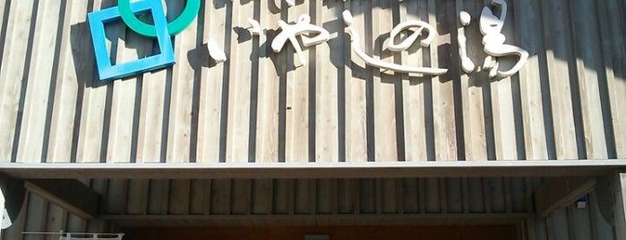 なかじま猿田彦温泉 いやしの湯 is one of 訪れた温泉施設.