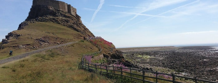 Lindisfarne Castle is one of Carlさんのお気に入りスポット.