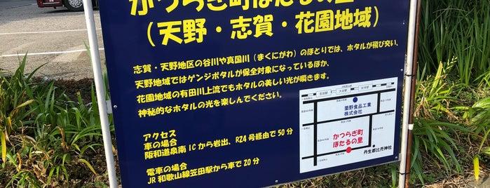 かつらぎ町 is one of SNIPPETY GUIDE.