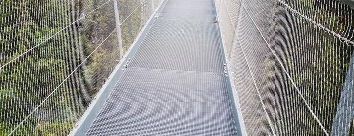 Highline179 is one of Alpes bavaroises et Tyrol autrichien.