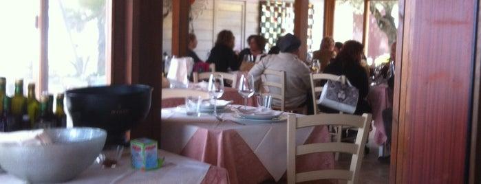 il Veliero Ristorante is one of Riviera Adriatica 3rd part.