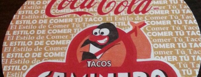 """Tacos """"El Caminero"""" is one of Cancun."""