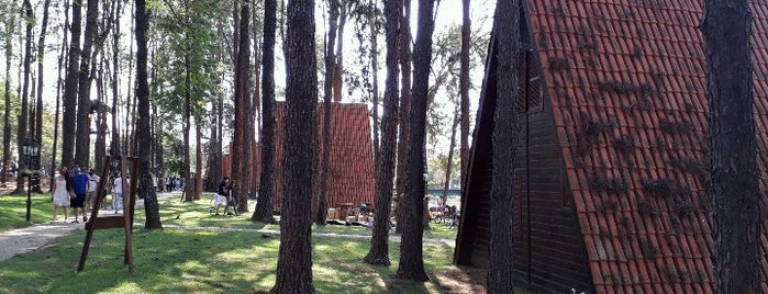 Parque Van Gogh is one of Holambra/Jagua.