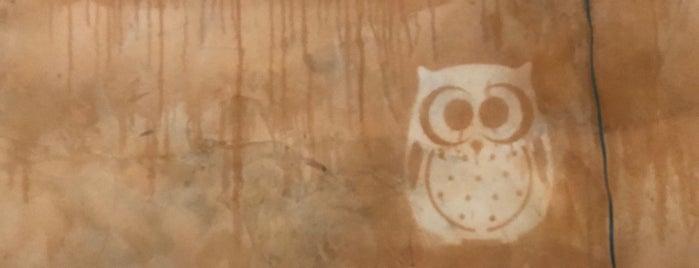 Toasted Owl Cafe is one of Arizona.