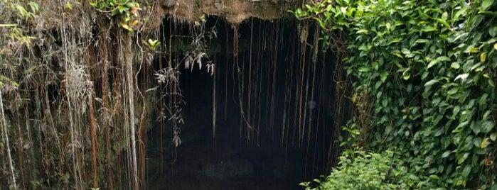Kaumana Caves is one of Hawaii.