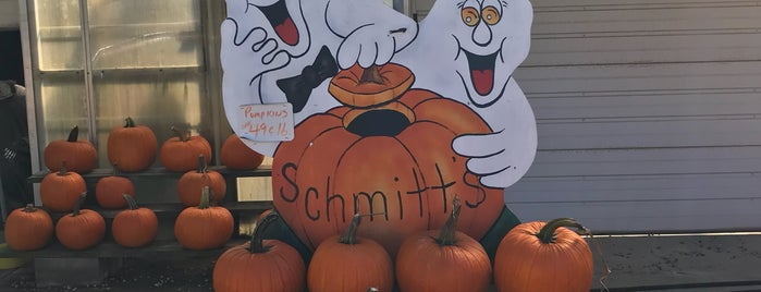 Schmitt's Country Farm is one of North Fork Fun and Games.