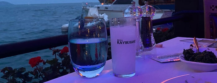 Kayıkhane is one of Meyhane.