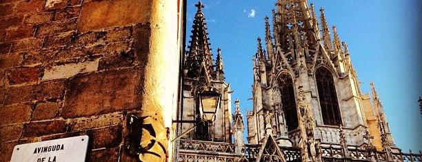 Plaça Nova is one of Viva Barcelona!.