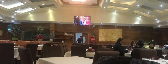 Restaurant Zhong Yi is one of Talca.