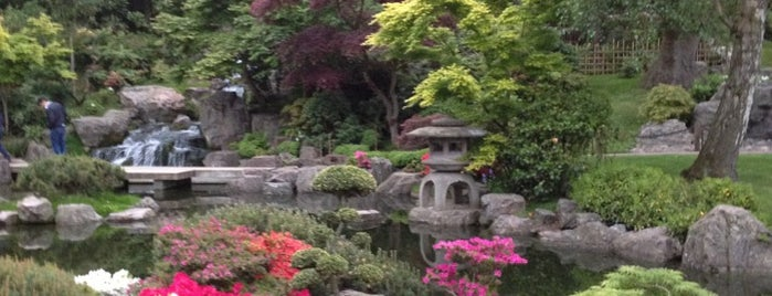 Holland Park is one of London - All you need to see!.