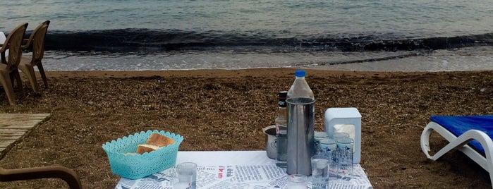 omi beach sahil restaurant is one of Posti che sono piaciuti a Mehmet.