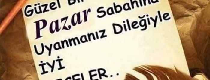 Aydinca is one of Lieux qui ont plu à Ahmet Rıza.