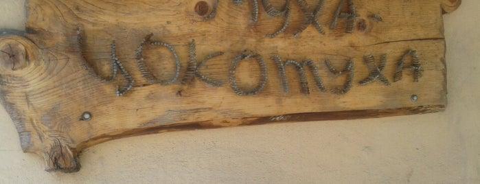 Муха Цокотуха is one of Грузинская кухня.