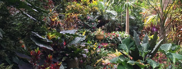 Hunte's Gardens is one of Besuchen non-D.