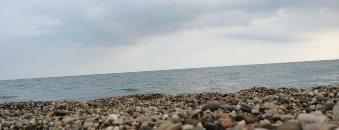 Лидзавский пляж is one of Liliya : понравившиеся места.