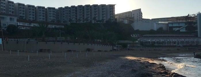 Elexus Hotel Beach is one of Nilgun☀️☀️☀️ 님이 좋아한 장소.