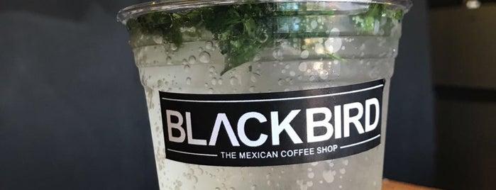 Blackbird Coffee Shop is one of Locais salvos de Sergio.