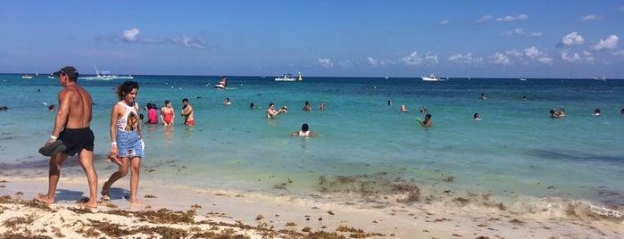 Beach is one of Orte, die Ricardo gefallen.