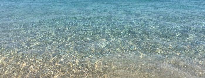 Palamutbükü Sahil is one of gamze'nin Beğendiği Mekanlar.
