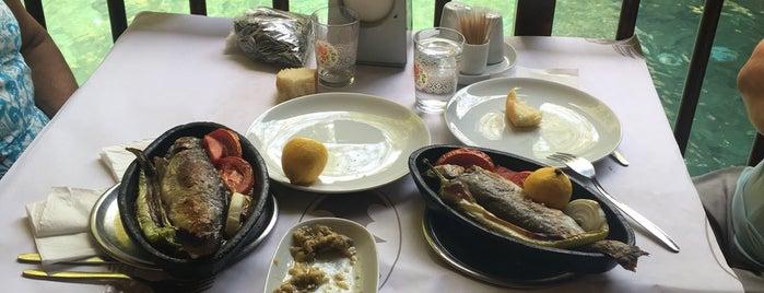 Topgözü Pınar Restaurant is one of gamze'nin Beğendiği Mekanlar.