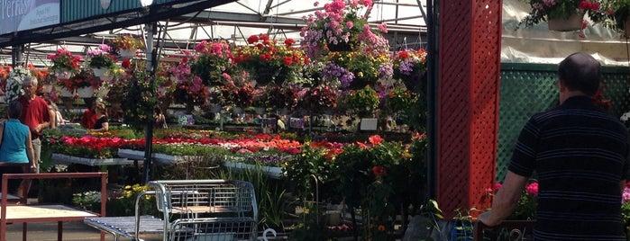 Marché des Jardiniers is one of Posti che sono piaciuti a Omer.