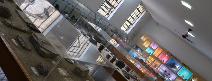 """Museu Geológico """"Valdemar Lefèvre"""" (MUGEO) is one of São Paulo - O que tem por perto?."""