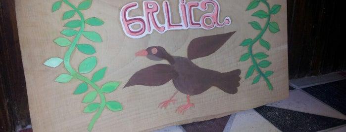 Grlica is one of Iliyaさんの保存済みスポット.