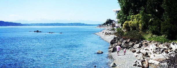 Cormorant Cove is one of Seattle's 400+ Parks [Part 2].