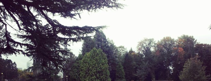 Volunteer Park is one of Seattle's 400+ Parks [Part 1].