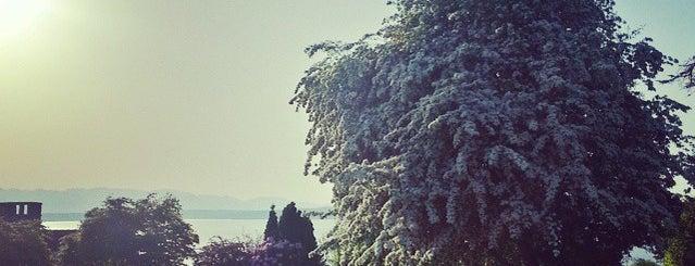 Blue Ridge Places is one of Seattle's 400+ Parks [Part 1].