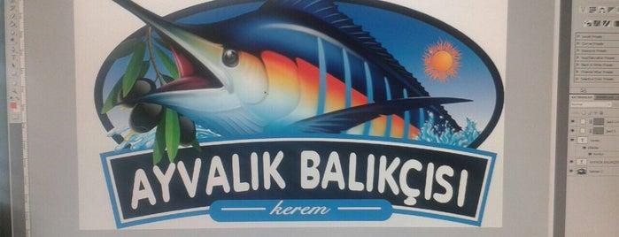 Ayvalık Balıkçısı Kerem is one of to go & eat.