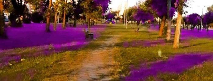 Gülveren Park is one of Haloo.