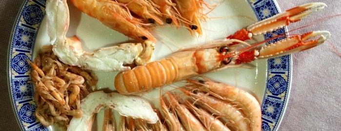 La Gamba de Oro marisco tienda online is one of where to eat in cordoba spain.