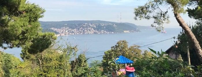 Çamlık Cafe 34 is one of Ist. 2017.