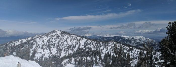 Heavenly Ski Resort is one of Orte, die Will gefallen.