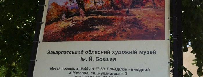 Художній музей ім. Й. Бокшая / Bokshay Art Museum is one of Anastasya'nın Kaydettiği Mekanlar.