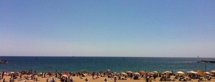 Platja de la Barceloneta is one of Spain 🇪🇸.