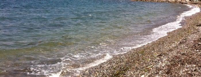 Aşıklar Çeşmesi is one of Plaj.