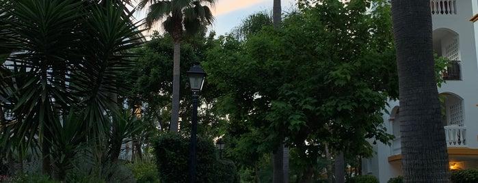 La Dama De Noche Bloque 4 is one of Fabrizio : понравившиеся места.