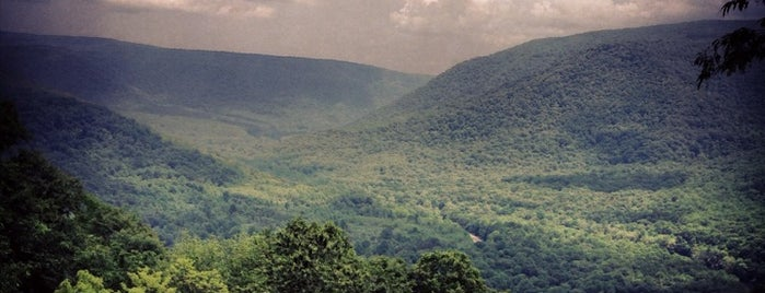 Ohiopyle State Park is one of America's Top Hiking Trail in Each State.
