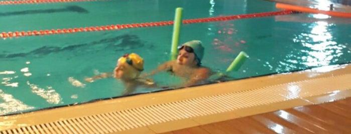 Let's Club Swimming Pool is one of Tempat yang Disukai Gurkan.